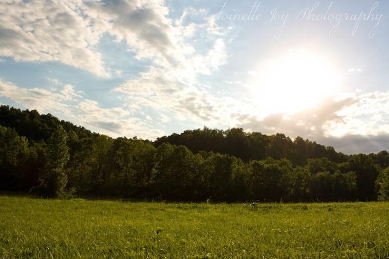 Summer's Evening WM Resized