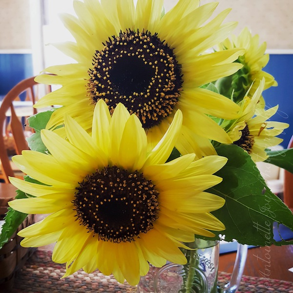 Sunflowers 2 WM